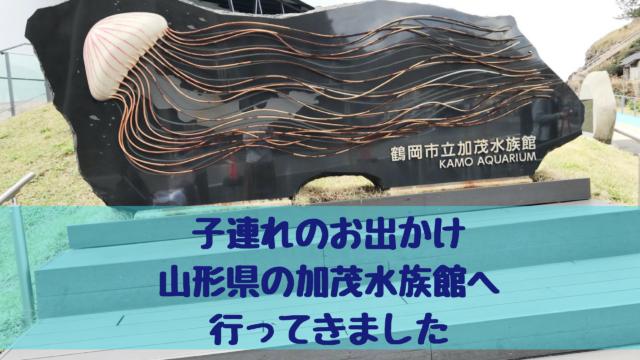 子連れのお出かけ山形県の加茂水族館へ行ってきました