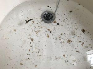 オキシ漬けの汚れ